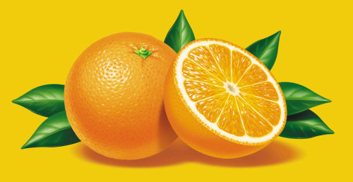 Food & Drink Oranges
