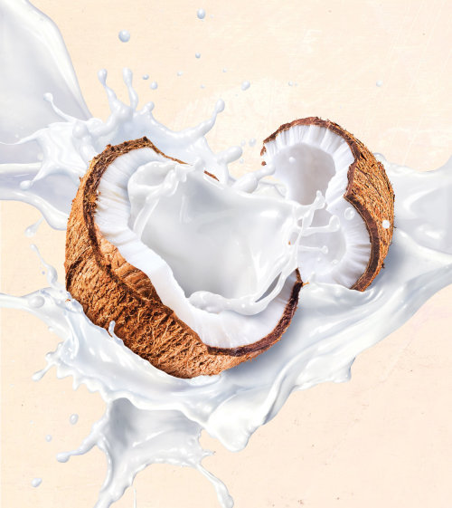 Packaging illustration  for Australia's Own coconut milk