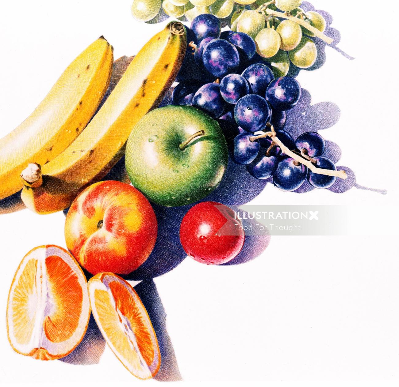 Color pencil made illustration of fruit