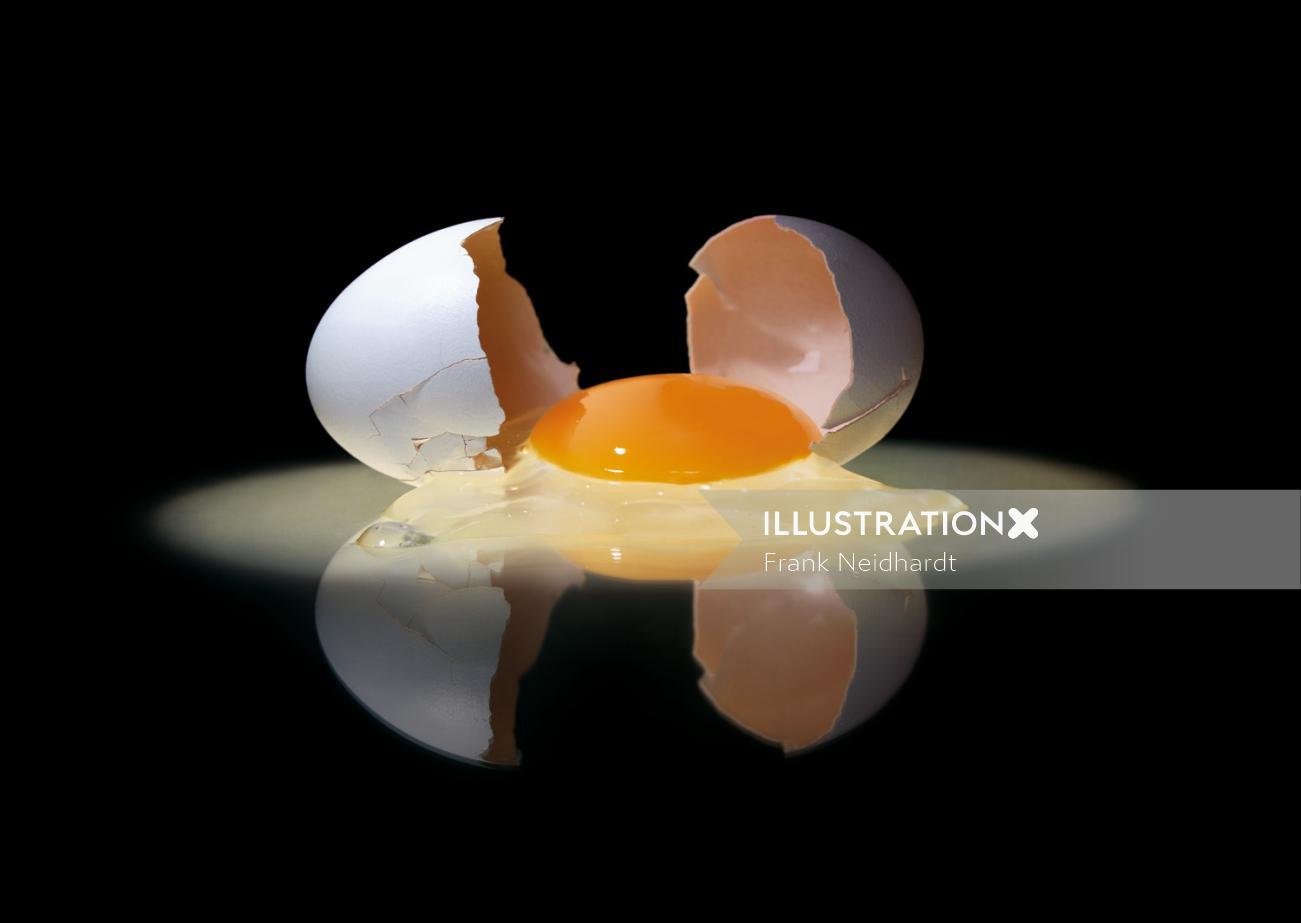 Broken egg with yellow yoak