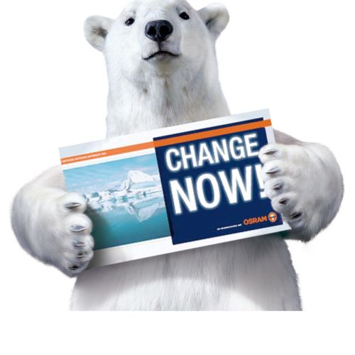 Polar bear with sign card