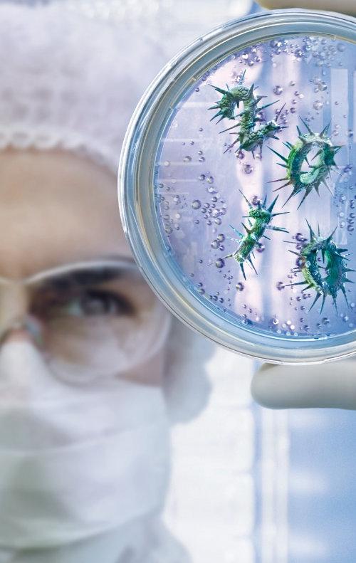 Scientist checking virus in lab