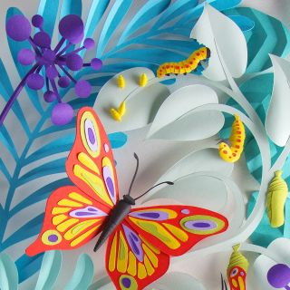Butterfly life-cycle paper art for Brio Magazine