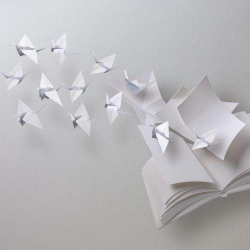 Birds paper art illustration