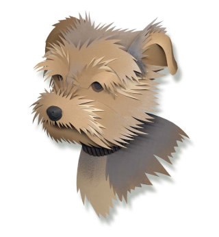Digital 3D collage of Yorkshire terrier dog