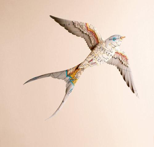 Ilustración del pájaro golondrina