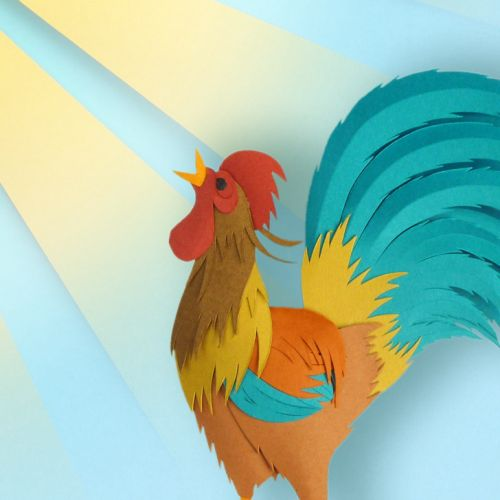 rooster crowing illustration