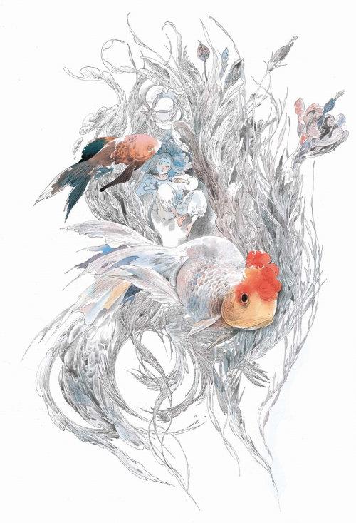 Animals birds on tree