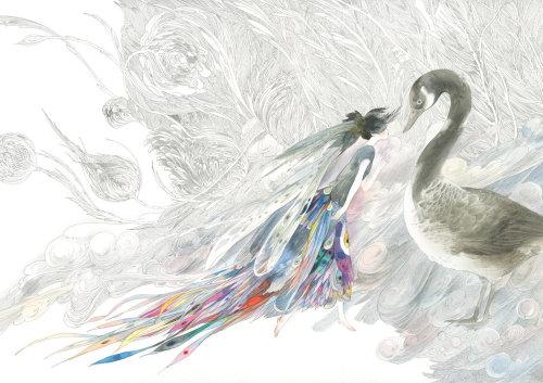 天鹅的动物艺术