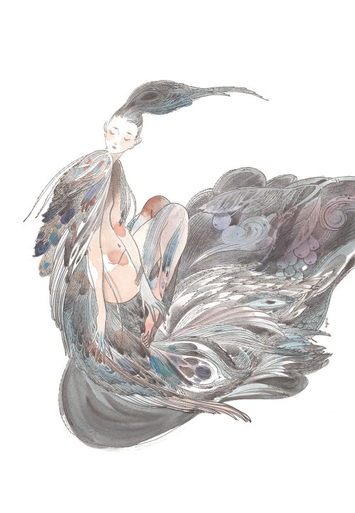 Contemporary illustration woman peacock feathers