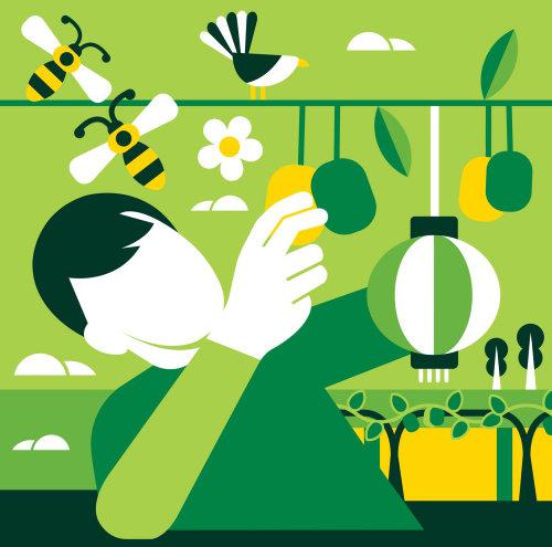 Graphic design of Kiwi fruit crops