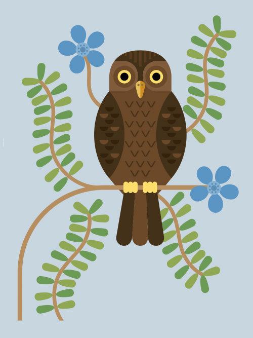 Painting of Owl bird