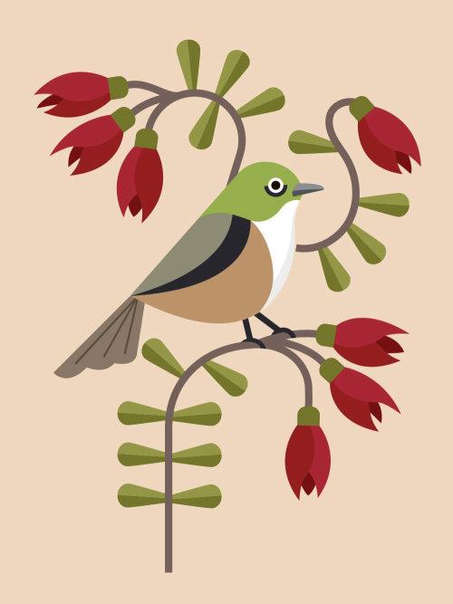 Silvereye bird painting