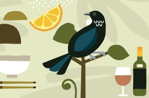 Hand drawing of Tui bird for Oku New Zealand Tea