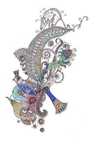 LIittle Bird illustration by Hannah Davies