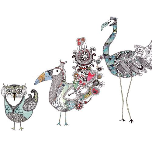 Birds illustration by Hannah Davies
