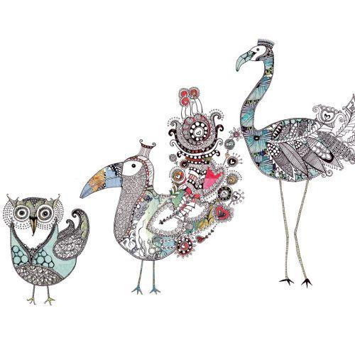 Birds illustration by Hannah Davies