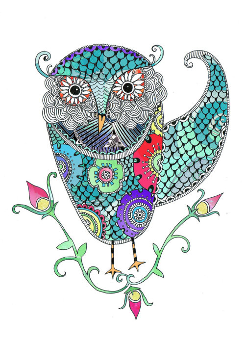 Owl illustration by Hannah Davies