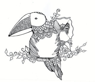 Parrot sketches illustration by Hannah Davies