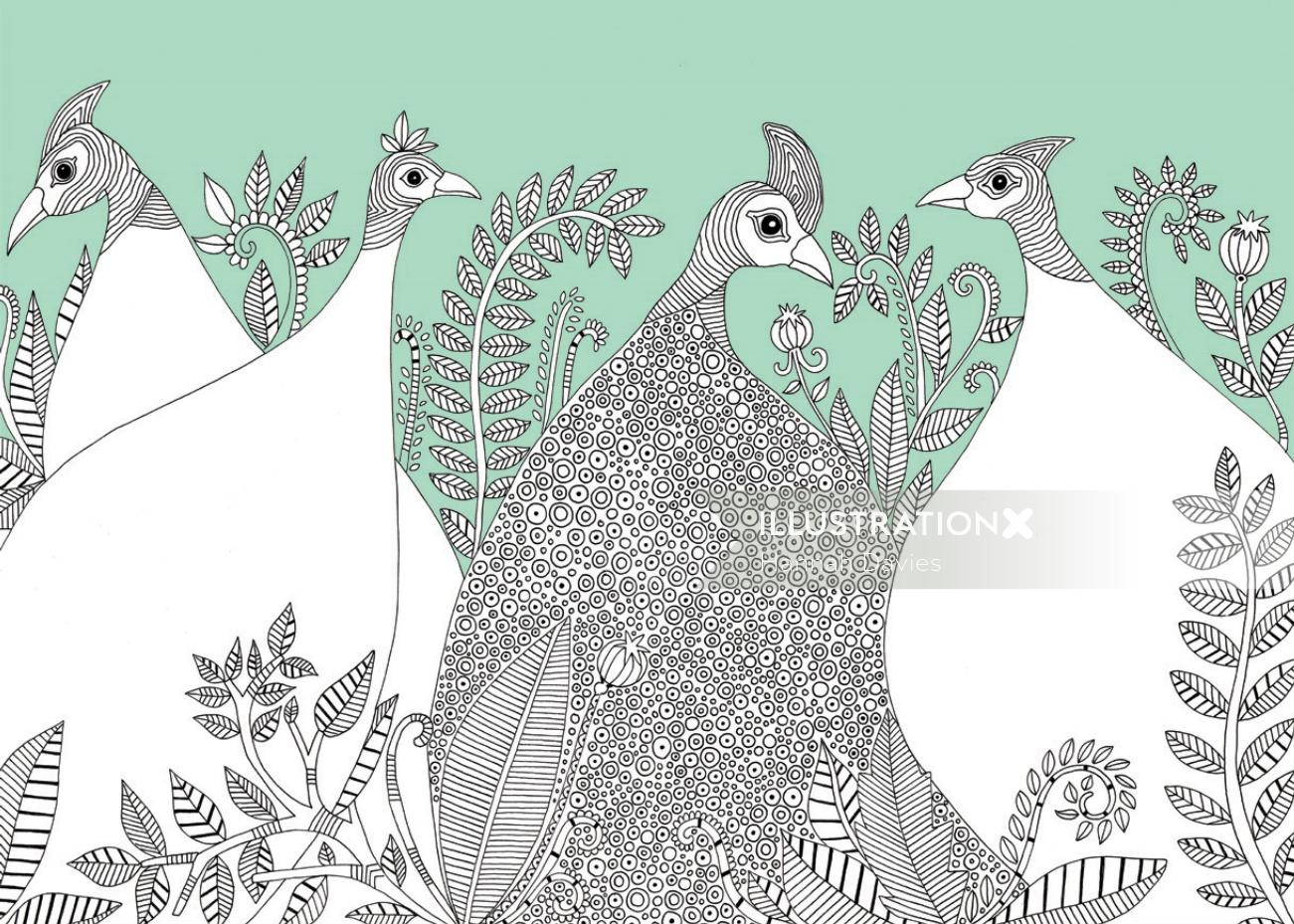 Pencil made bird illustration