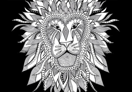 Lion black and white illustration