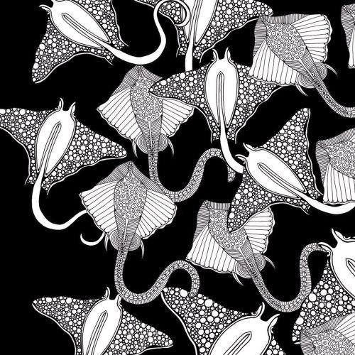 Sting ray black and white illustration