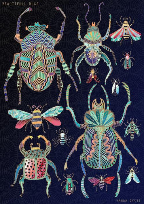 Animals Bugs design
