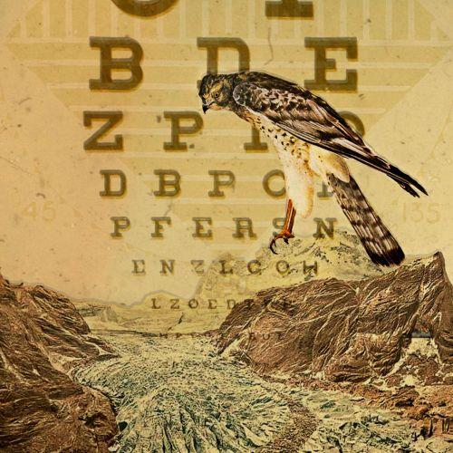 Eye chart lettering art