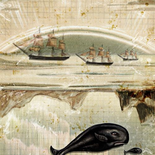 An illustration of Whales & Ships