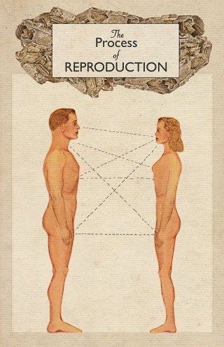 An illustration of process of reproduction