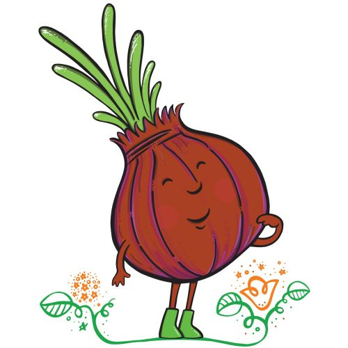 Onion Vegetable Character Design