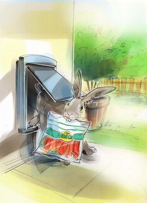 兔子的水彩画