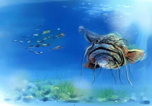 Nature illustration of Deep sea creatures
