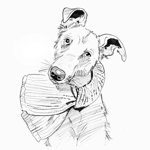 Line portrait of dog