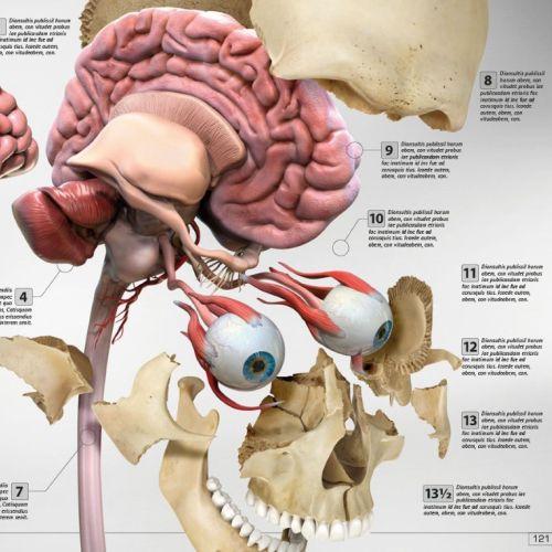 InfoTec Medical