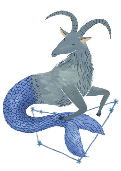 horoscope, animals, life style, magazine, flatcolour,