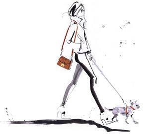 Fashion lady with pet dog