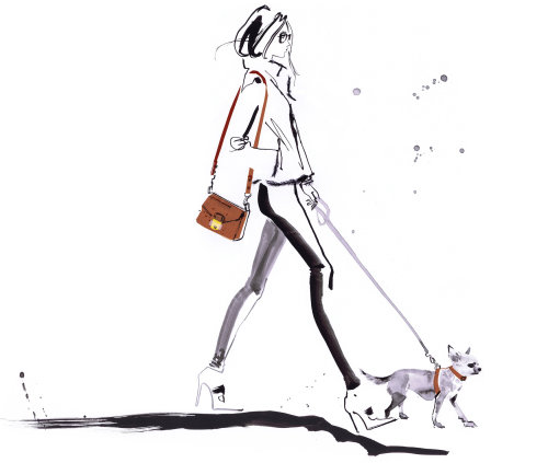 Fashion lady with pet dog