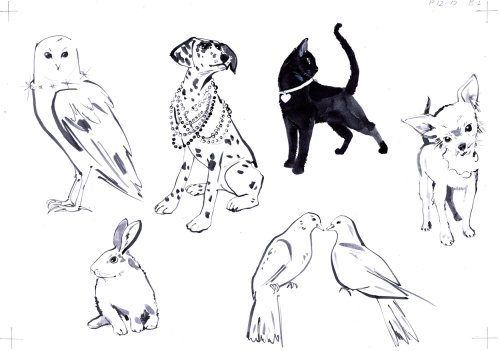 Illustration of pets