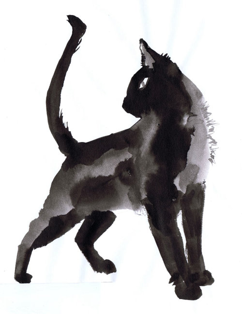Illustration du chat noir