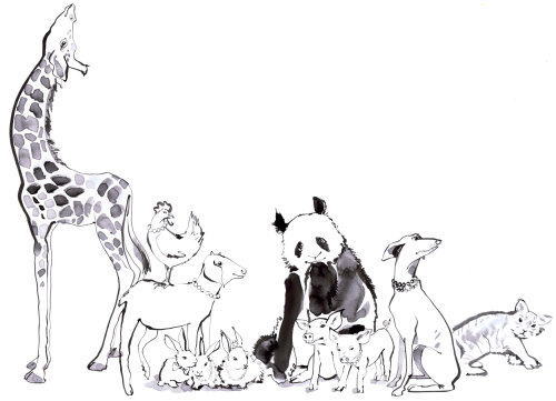 Illustration aquarelle animale par Jacqueline Bissett