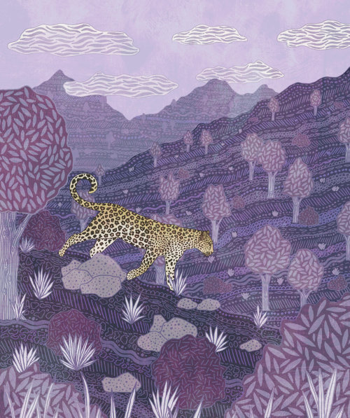 Animals Cheetah in forest