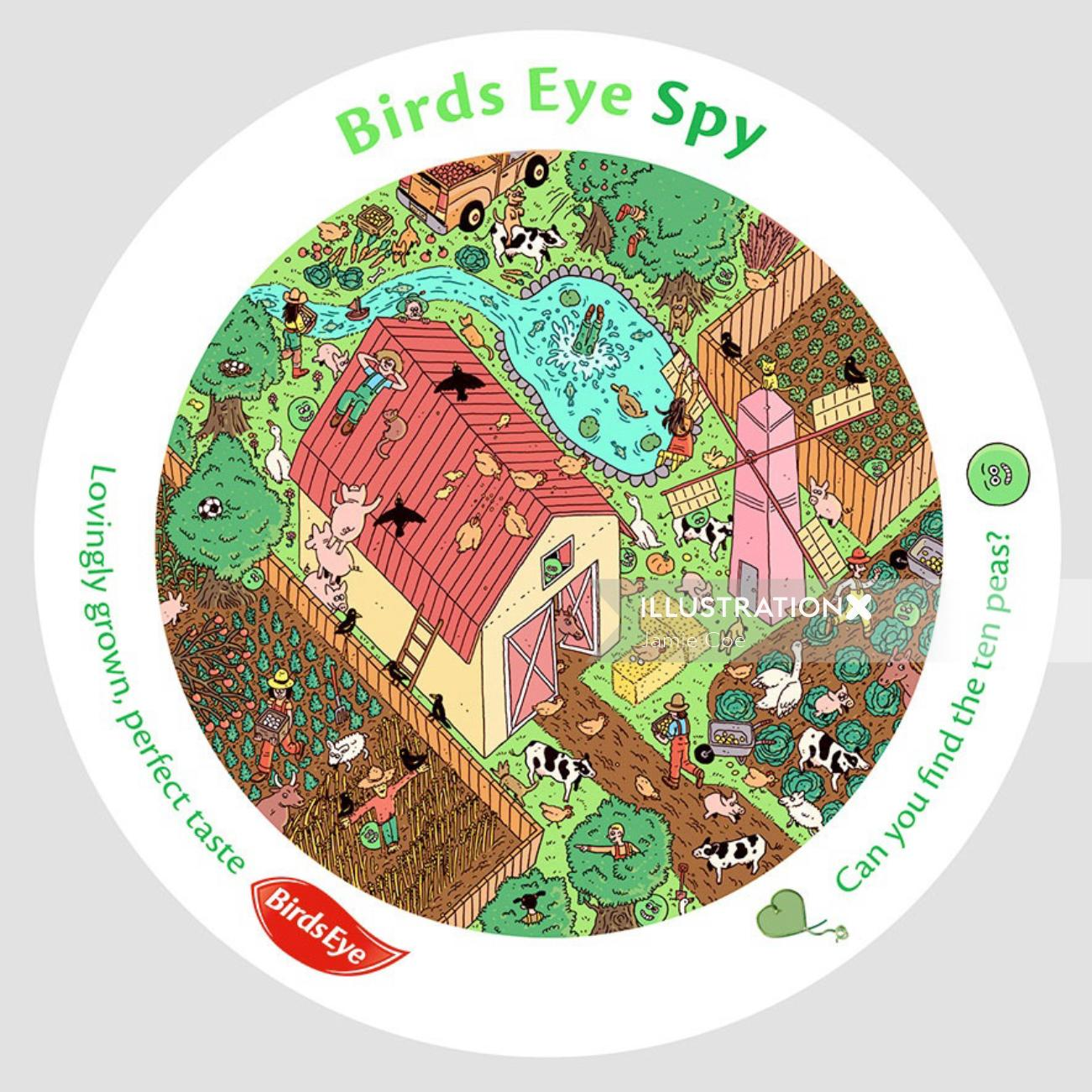 Graphic design of birds eye spy