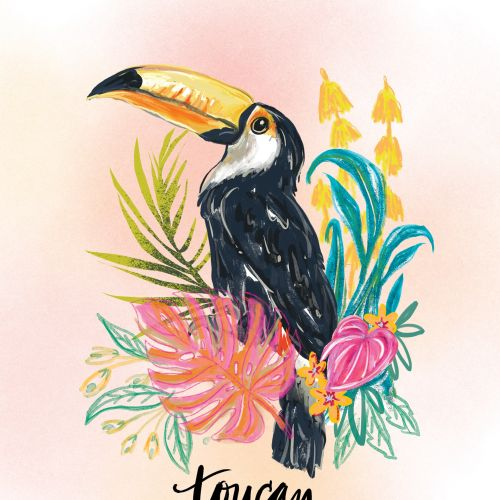 Toucan bird watercolor drawing