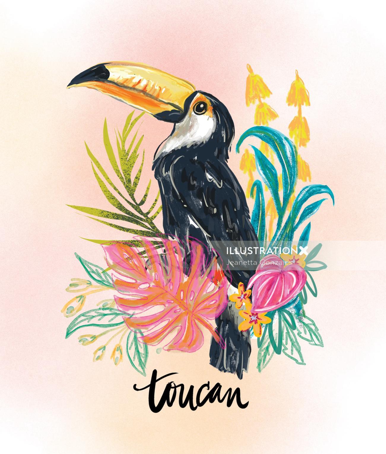 Toucan bird watercolor drawing