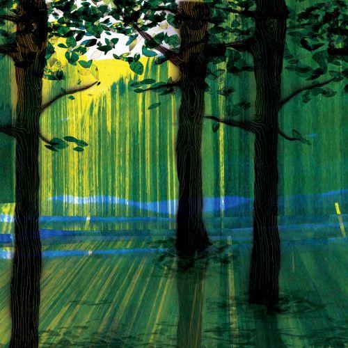 Sun raise on trees illustration by Jennifer Maravillas