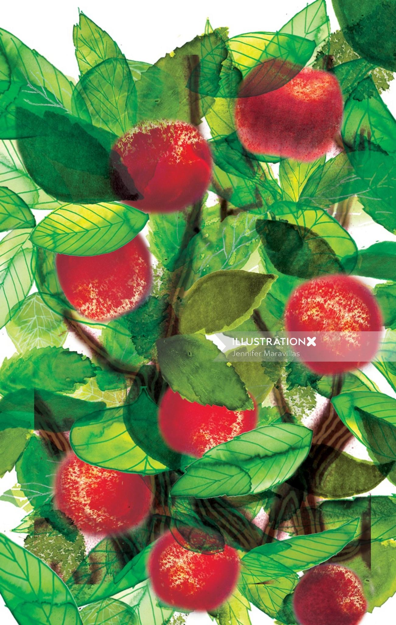 Cherry illustration by Jennifer Maravillas