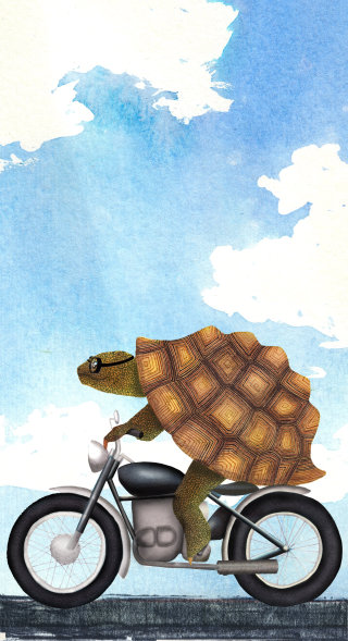 An illustration of Tortoise on motorcycle