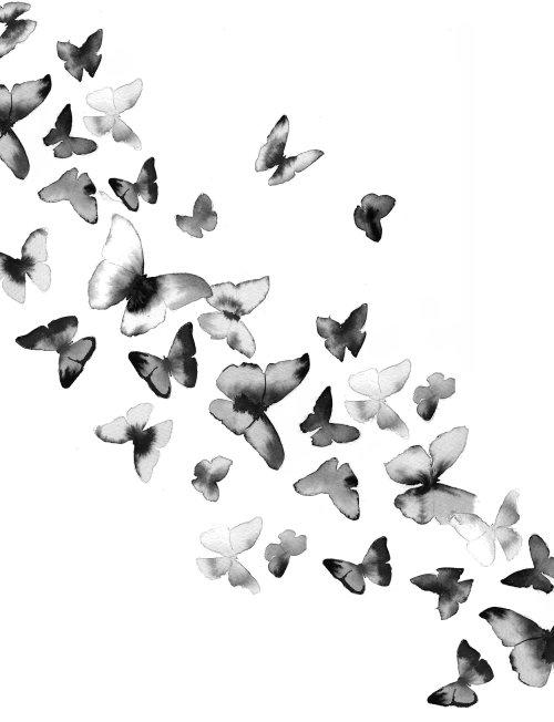 watercolor art of multiple butterflies