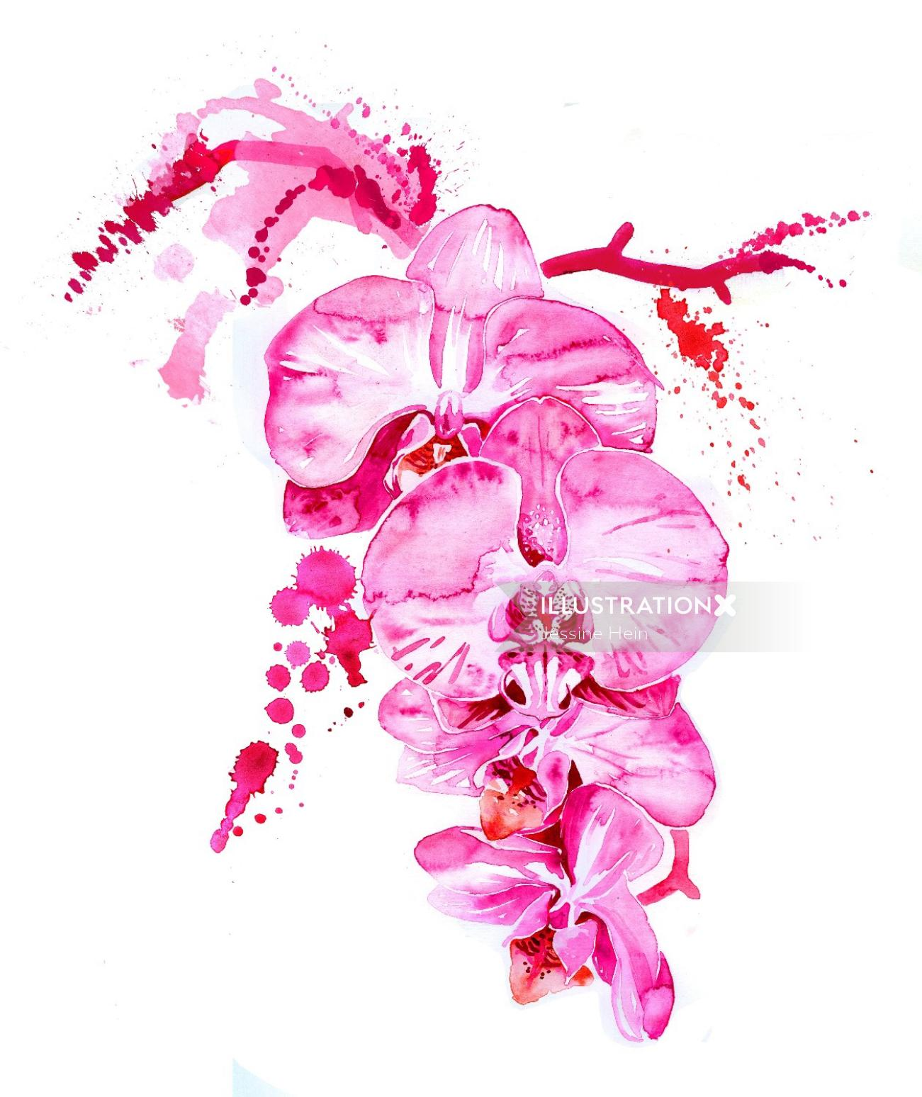 watercolor painting of pink flowers